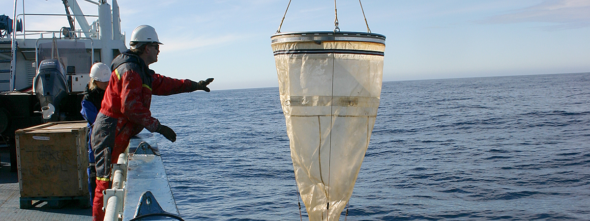 A net for catching zooplankton.