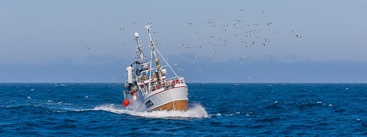Small fishing vessel at sea, with a flock of sea gulls flying above.