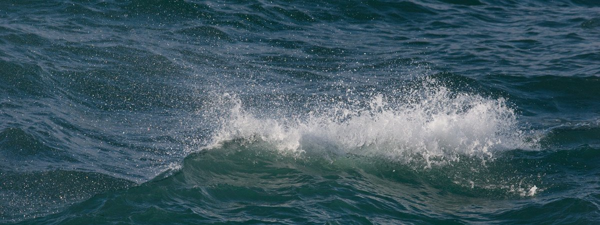 A small wave on the ocean.